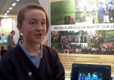 Highlights: eircom Junior Spiders 2013
